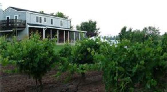 Amador  Harvest Inn