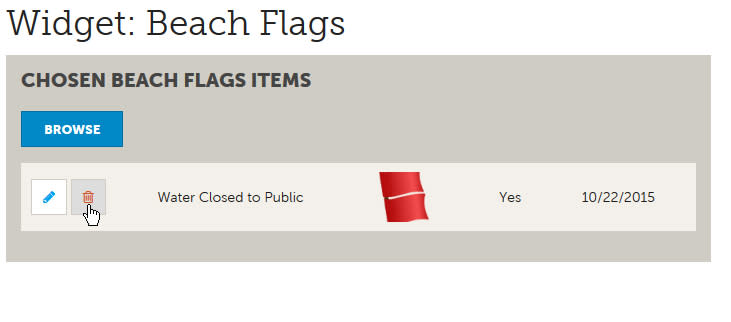 Flags Change Step