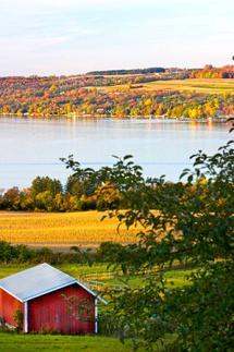 Fall in Cayuga County - Red Barn