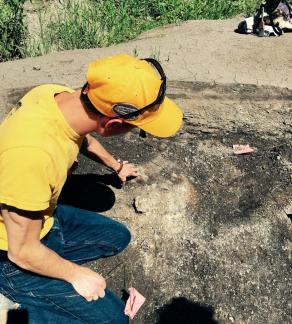 Fossil Dig with Canadian Fossil Discovery Centre - Discover Morden