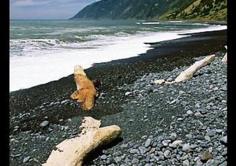 1718P3QT Luong www dot terragalleria dot com.jpeg
