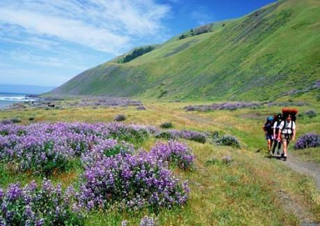 523P3Hike the Lost Coast Photo courtesy of the Bureau of Land Management.jpg