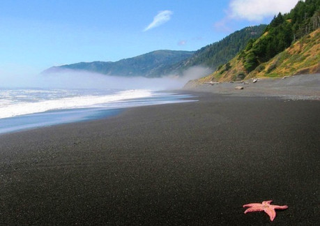 6787PBlack Sands Beach 2.jpg