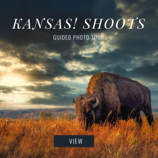 Kansas Shoots