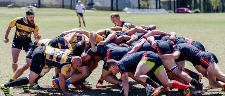 Clayton Rugby
