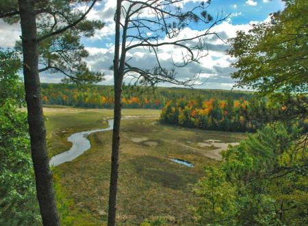 A view of the Boardman River from an Overlook at Brown Bridge
