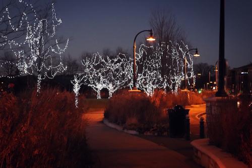 Phoenix Park Lights Christmas