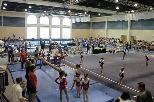 AAU Fall State Gymnastics Championships