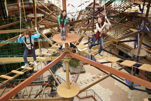 Ginger children playing on a ropes course suspended 3 feet above the air
