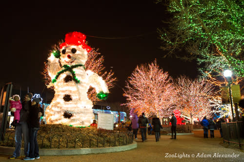 ZooLights at Chicago's Lincoln Park Zoo
