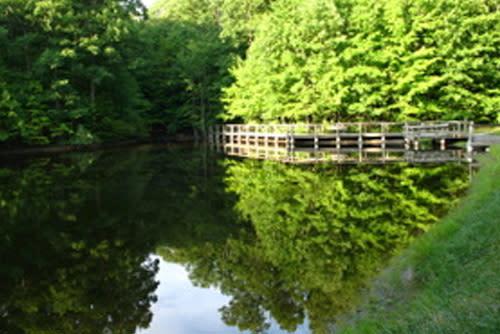 Lindenwood Nature Preserve - Fort Wayne, IN