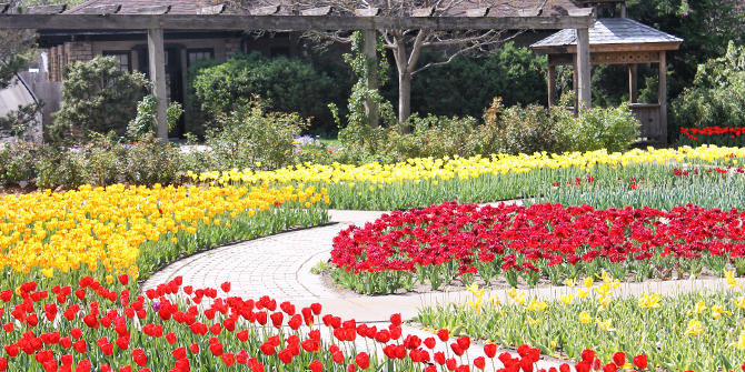 Botanica In Bloom