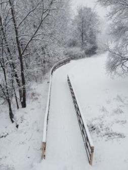 The River Greenway (photo taken by Mark Hanon)