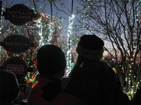Father holiding daughter looking at the light display at the Columbus Zoo and Aquarium