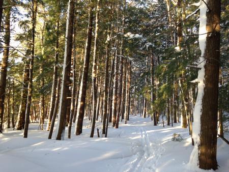Timbers Recreation Area