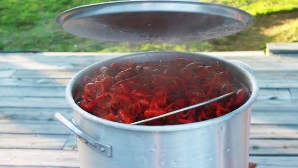 Video Thumbnail - youtube - How To Cook Crawfish