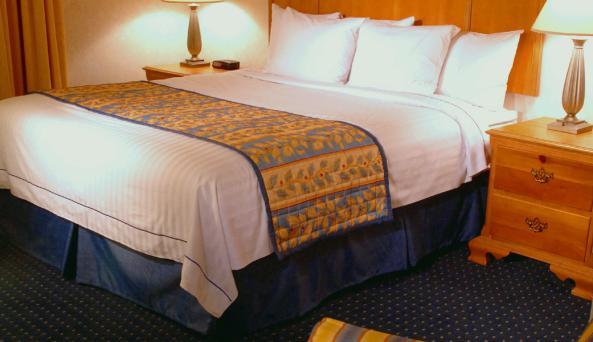 Residence-suite1.jpg