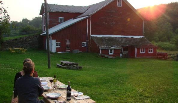 picnic at sunset.jpg