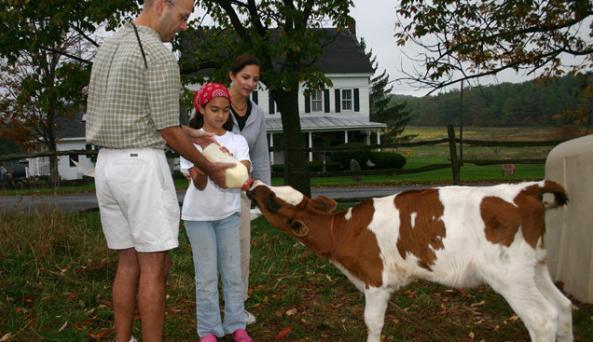 hull-o-Farms.jpg