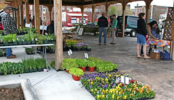 Gloversville Farm Market