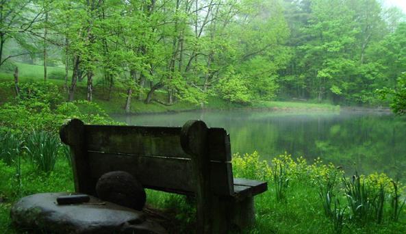 pond_bench.jpg