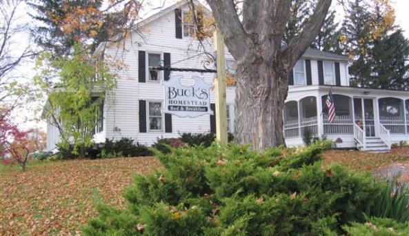 Buck's Homestead Fall.JPG