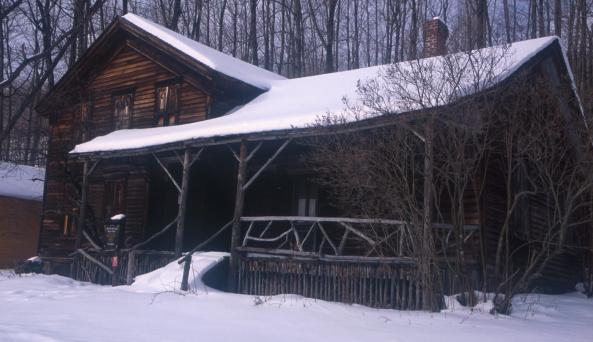 Woodchuck_snow.jpg