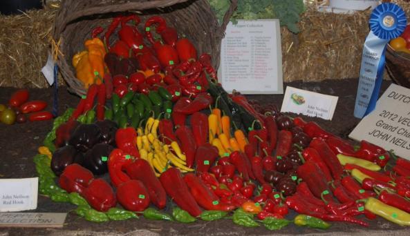 DC Fair - vegetables