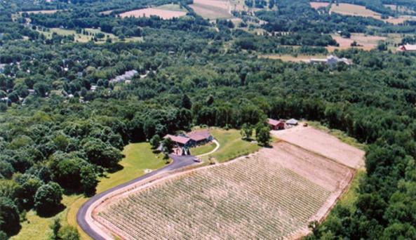 aerial[1].jpg