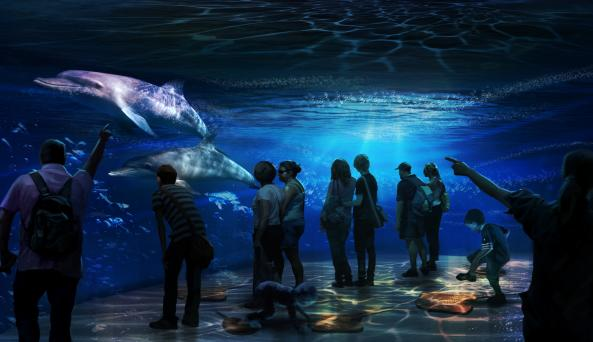 National Geographic Encounter: Ocean Odyssey 5