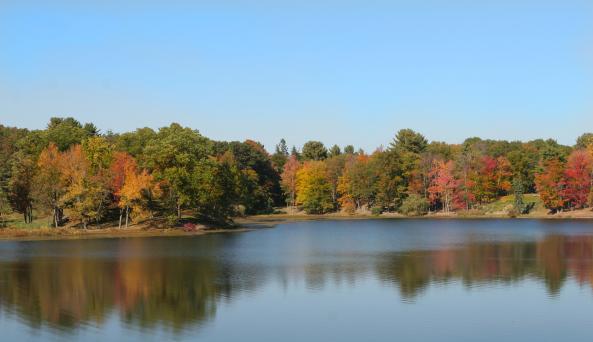 Innisfree lake.jpg