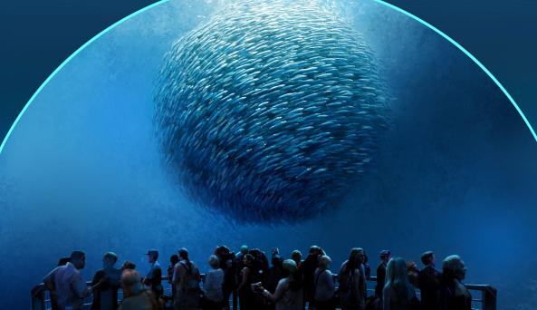 National Geographic Encounter: Ocean Odyssey 7