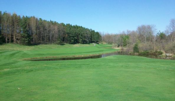 Blue Heron Golf View