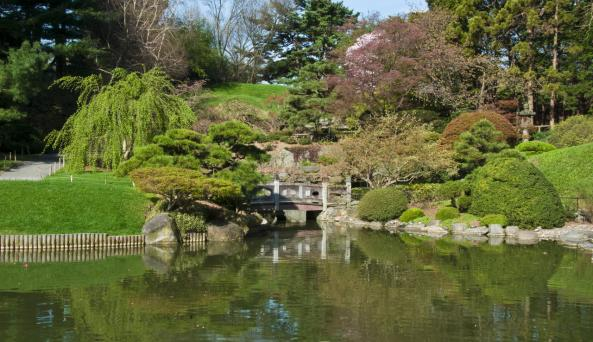 Brooklyn Botanic Garden - Photo by Keith Telfeyan