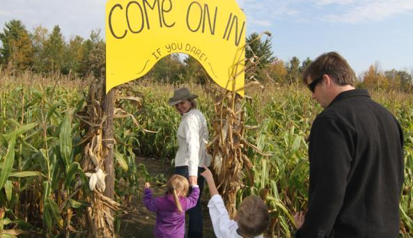 Country Dreams Farm Corn Maze