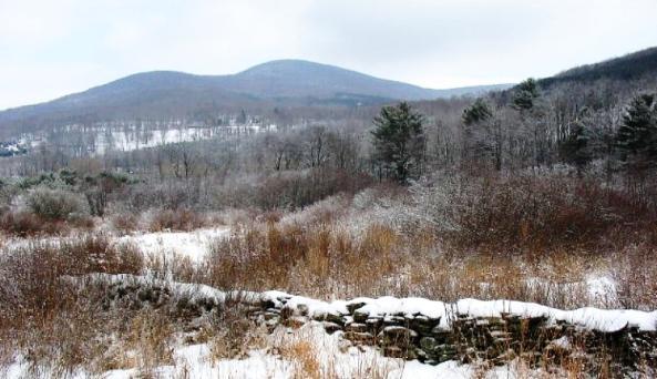view from the Catskill Scenic Rail Trail north of Roxbury 4 .JPG