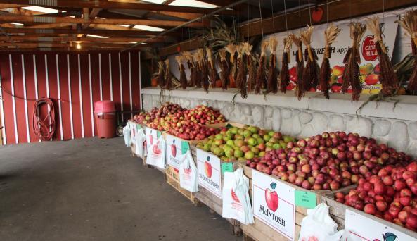 More fresh apples