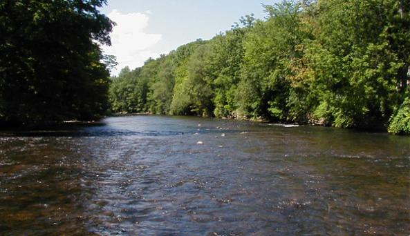 East Branch of the Delaware River