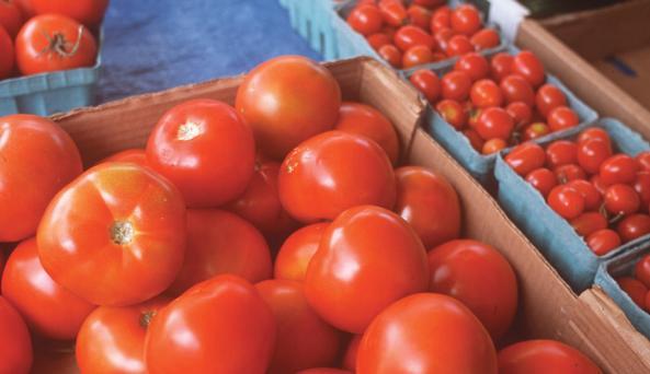 Plattsburgh Farmers Market