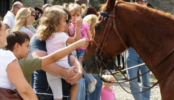 Heritage Harvest & Horse Festival