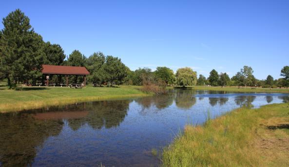 Joseph Davis State Park