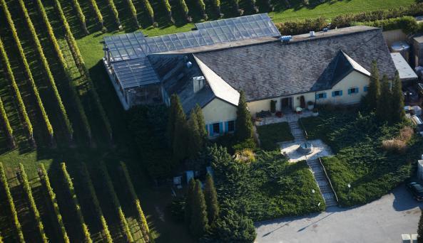 Wolffer Estate Vineyards