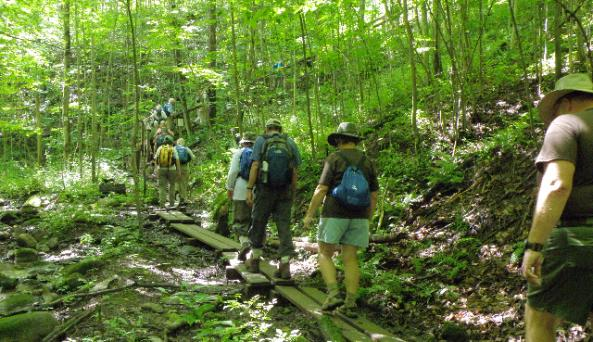 Link trail