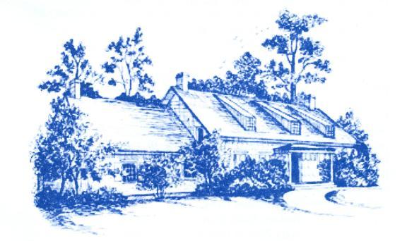 Madam Brett - blue drawing