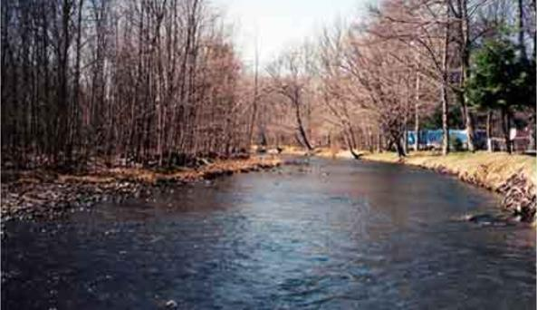 Neversink River Campground