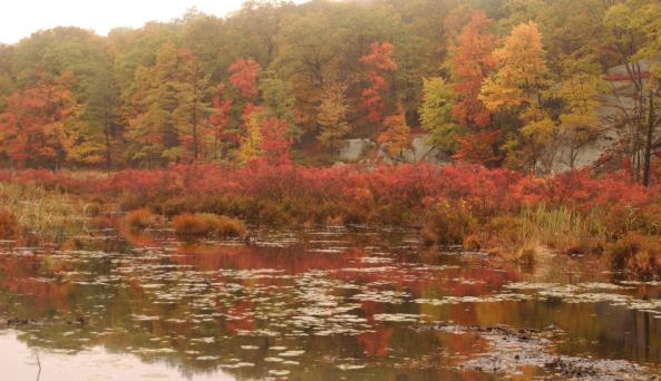 Harriman State Park Lake - Photo Courtesy of Orange County Tourism