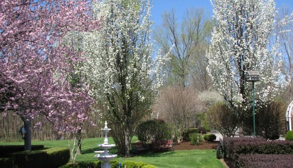 Bykenhulle - garden