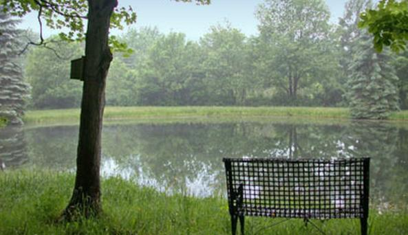 Bench overlooking the water at The Quiet Place