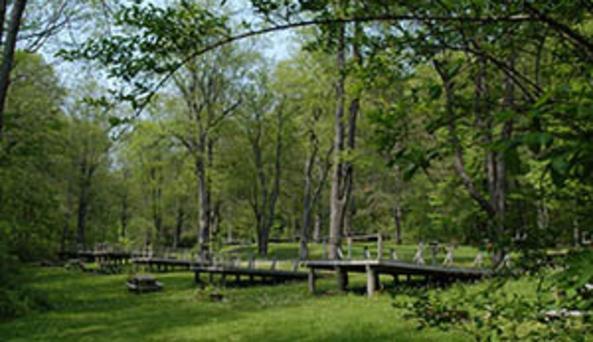 Rudd Pond - camping