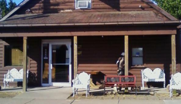 Sodus Shores Log Cabin